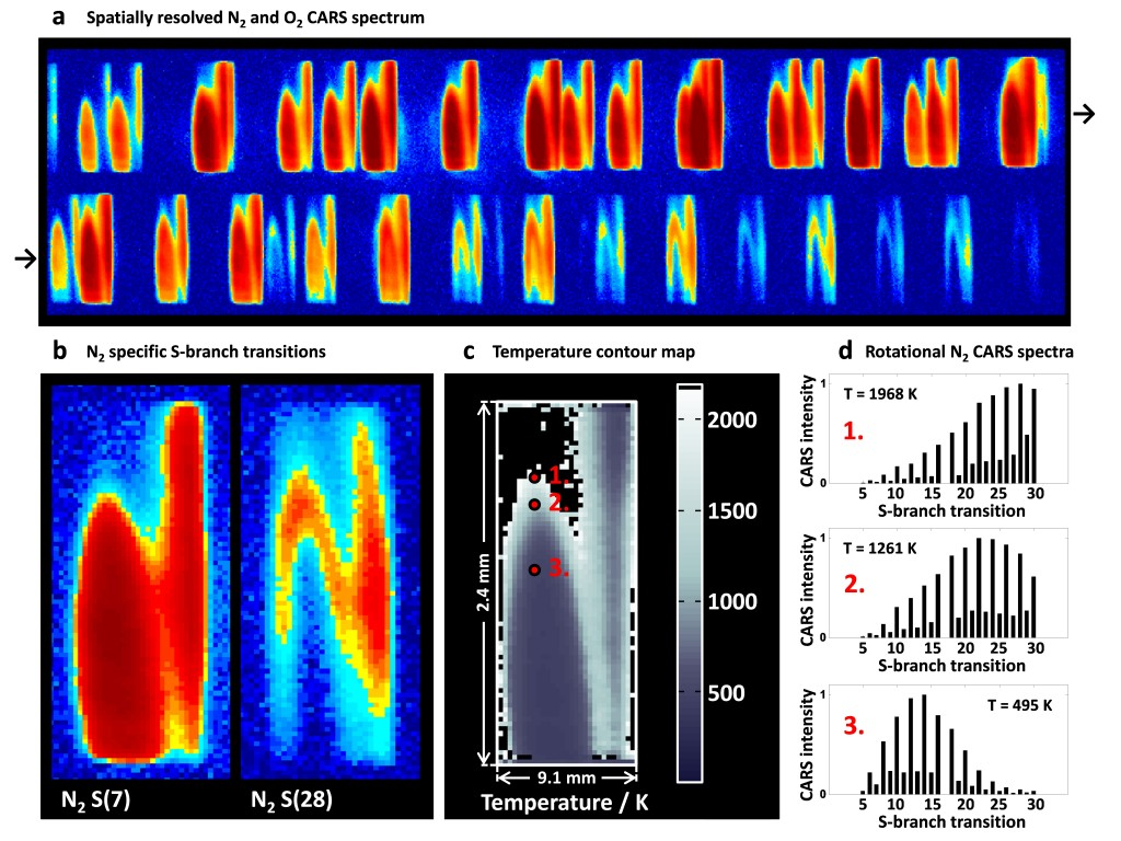 Figure. 2. Spatial maps of specific S-transitions and the derived temperature contour. a. A spatially resolved planar CARS signal as it is dispersed and detected on the CCD. The folded spectrum extends two horizontal rows and consists of many fully isolated N2 and O2 S-branch transitions. The pixels in each of the individual transitions map a specific spatial location in the probed field. b. Two specific N2 S-transitions, which belong to a low (J = 7) and high (J = 28) initial rotational quantum state, respectively. The intensity depends on the thermal population of the specific states involved, governed by the different zones of the reaction. c. Derived temperature map ranging from 450 K to ~2000 K, extending a view of 2.4 × 9.1 mm in the flame. d. Examples of rotational N2 CARS spectra originating from a specific spatial location, extracted as the pixel-to-pixel values of each respective transition.