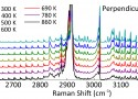 Dual-Resolution Raman Spectroscopy Allows Simultaneous Measurement of Multiple Hydrocarbons