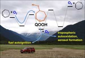 Many processes in the Earth's troposphere and in the conversion of hydrocarbon fuels into mechanical energy for transportation are driven by the chemistry of highly reactive free-radicals. In a report featured in the February 6th issue of Science the first example of a QOOH free-radical, an elusive but critical participant in tropospheric and combustion chemistry, has been directly observed and characterized.