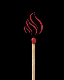 CRF Researchers answer Alan Alda's Flame Challenge